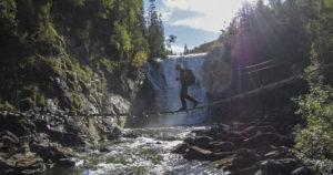 Turtips - Lomsdal-Visten Nasjonalpark