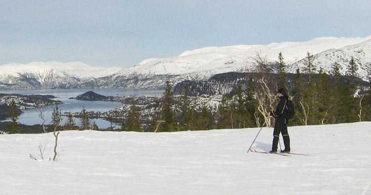 Rødliheia - skiterreng i Velfjord