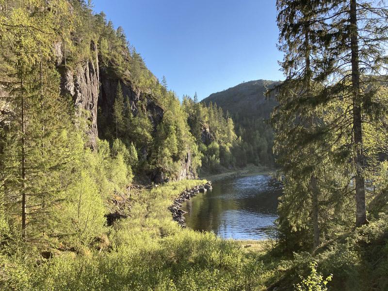 Vei ved Hyllvatnet