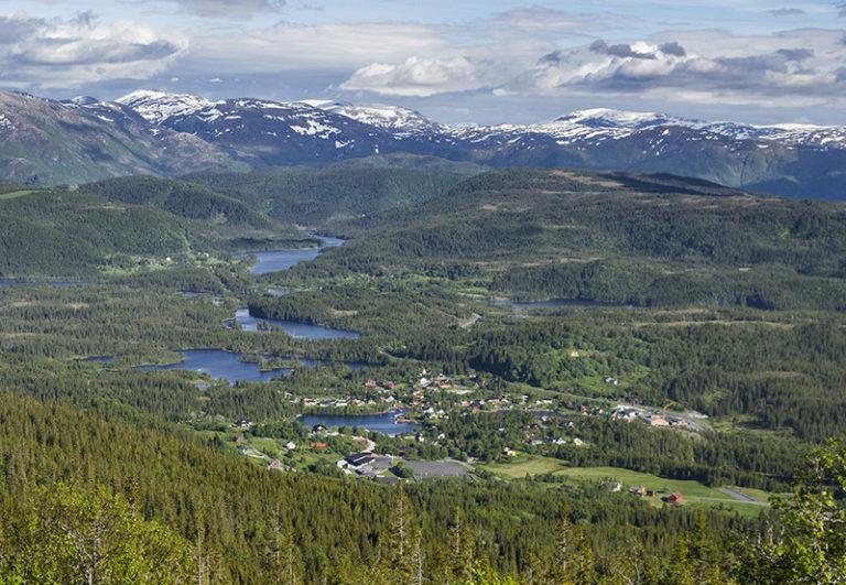 Bygder i Velfjord