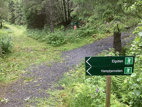 Velg sidevei eller fortsett rett frem til Kirkesti og gapahuk